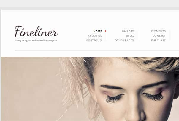 Aperçu du thème WordPress Fineliner