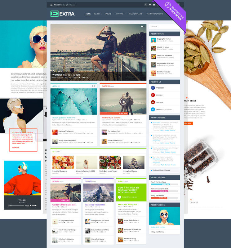 Extra theme WP Elegant Theme Magazine Blog