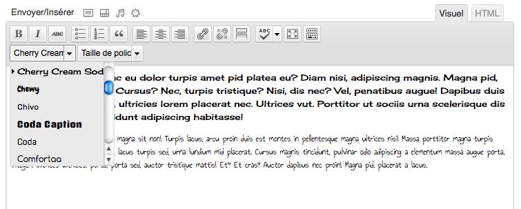 Ajout des polices Google Fonts dans une lise déroulante